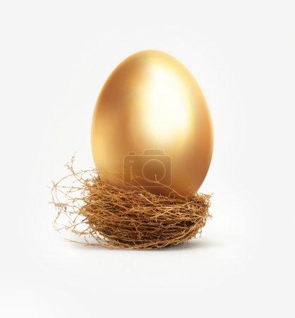 uovo d'oro nel nido<br>