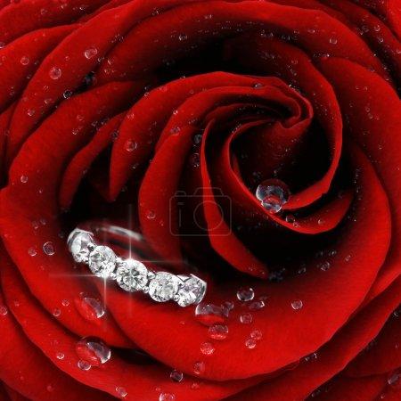 rosa rossa con diamante anello clos...