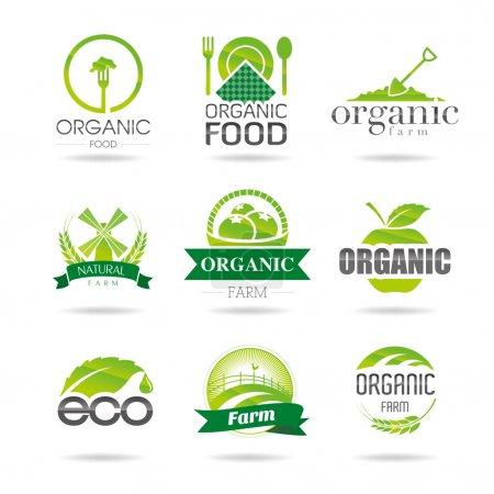 Ecologia, biologico, set di icone d...