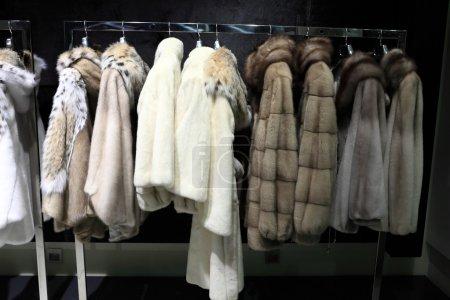 Cappotti di pelliccia sulle grucce