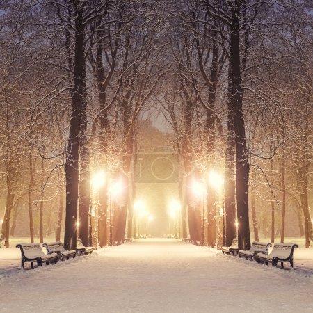sentiero nel parco della città fav...