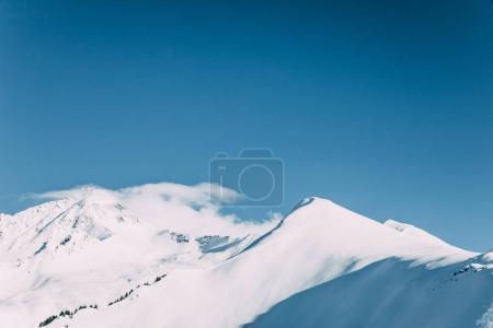 alpi<br>