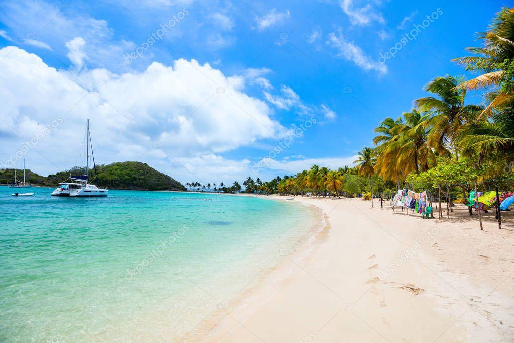 Ipastock spiaggia tropicale idillica con sabbia bianca for Isola di saint honore caraibi