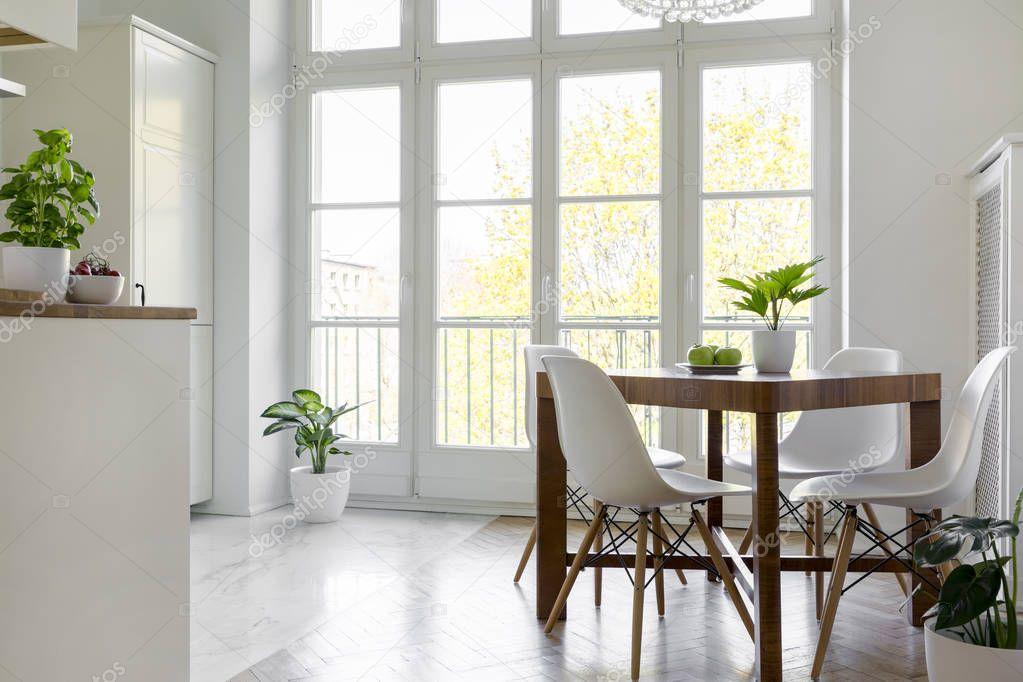 Ipastock - Sedie bianche al tavolo di legno con la pianta all'interno della luminosa sala da ...