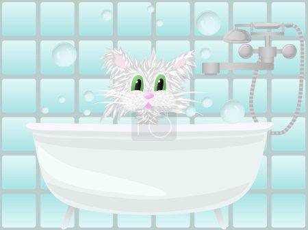 Ipastock fare il bagno gatto - Fare il bagno al gatto ...