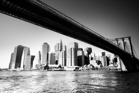 ponte di Brooklyn - new york city