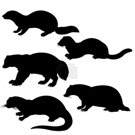 animale di sagome vettoriali su sfo...