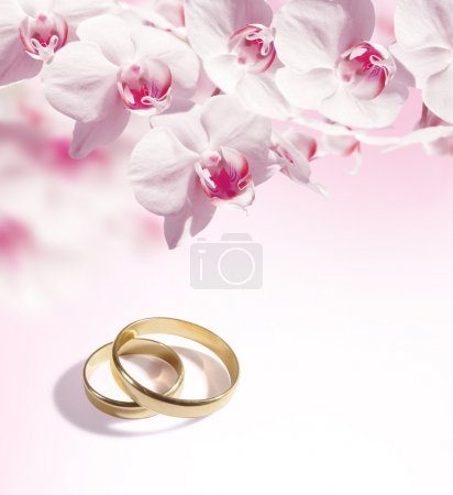sfondo di matrimonio con gli anelli...