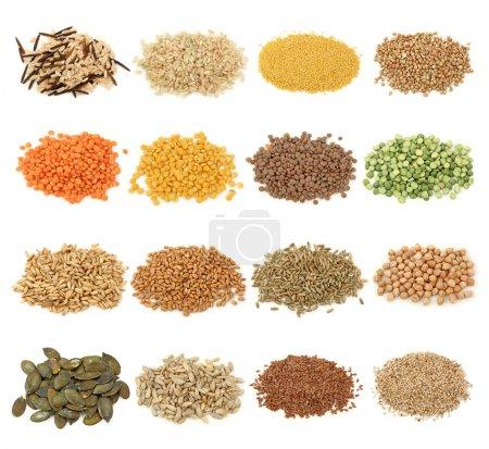 Raccolta di cereali, cereali e seme...