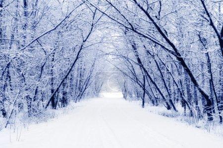 inverno<br>